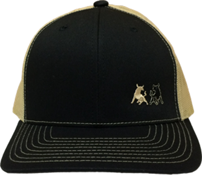 Picture of TwoBulls Mesh Cap - Black & Tan